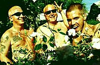 Sublime (band)