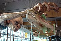 Sculpture of Gollum catching fish at Wellington Airport, 2013, installed to mark the release of The Hobbit: An Unexpected Journey<ref>{{cite news  last1=Child  first1=Ben  title=Hobbit release marked with giant Gollum sculpture at Wellington airport  url=https://www.theguardian.com/film/2012/oct/29/hobbit-release-gollum-sculpture-airport  access-date=19 June 2020  work=The Guardian}}</ref>