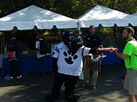 Panthers mascot Sir Purr, wearing a white jersey