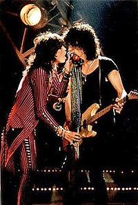 Steven Tyler and Joe Perry performing live in concert
