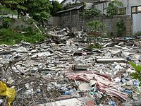 This urban scene in Paramaribo features a few plants growing amidst solid waste and rubble behind some houses.