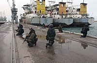 Polish GROM forces in sea operations during the Iraq War