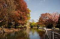 The River Wandle, Carshalton, in the London Borough of Sutton