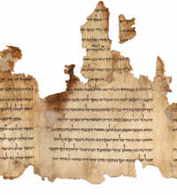 Portion of the Temple Scroll, one of the Dead Sea Scrolls, written during the Second Temple period