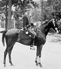 Axel Nordlander, who won two gold medals for Sweden in the dressage