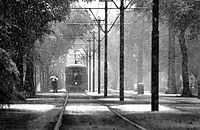 Snow falls on St. Charles Avenue in December 2008.