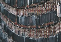 Dog tags hanging in the garden