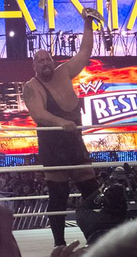 Show after he won the Intercontinental Championship at WrestleMania XXVIII