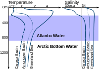 Density structure of the upper 1200 m in the Arctic Ocean. Profiles of temperature and salinity for the Amundsen Basin, the Canadian Basin and the Greenland Sea are sketched in this cartoon.