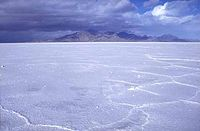 The otherworldly look of the Bonneville Salt Flats has been used in many movies and commercials.