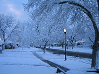 Snow in Rose Park, Salt Lake City