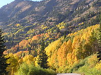 Little Cottonwood Canyon
