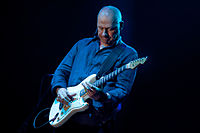 Knopfler performing in Zwolle, Netherlands, 2013