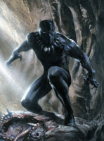 Black Panther (character)