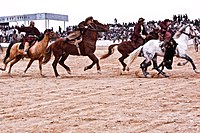 The ancient national sport of Afghanistan, Buzkashi