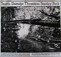 Vancouver Province photo of debris left by 1934–1935 storms and warning of the fire hazard if not cleaned up