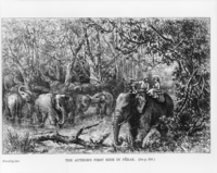 British female explorer, naturalist and writer Isabella Bird led by two local men in her first ride on elephant in Perak, c.1883