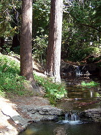 The south fork of Strawberry Creek, as seen between Dwinelle Hall and Lower Sproul Plaza