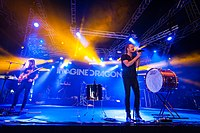 Imagine Dragons were an instant success after the release of their debut album, Night Visions.