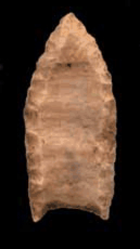A Folsom point for a spear