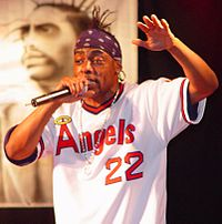 """Coolio reacted negatively to """"Amish Paradise"""", feeling it undermined the serious message of the original song."""