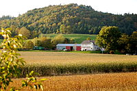 A farm in Grafton. Agriculture remains an important sector of the economy in the Annapolis Valley.