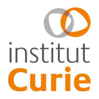 Curie Institute (Paris)