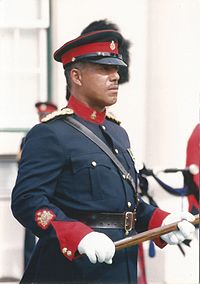 WO1 Herman Eve, RSM of the Royal Bermuda Regiment in 1992<ref>Ah yes, that was a very good year, Soldier magazine, June, 2001. Page 63.</ref>