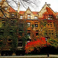 University of Chicago building during fall.