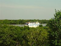 The Sunderbans bordering the Bay of Bengal is the largest single block of tidal halophytic mangrove forest in the world.