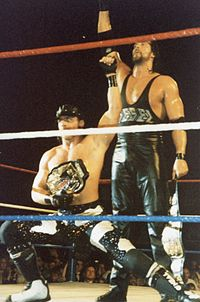 Diesel acted as Michaels's on-air bodyguard and tag team partner for two championship reigns