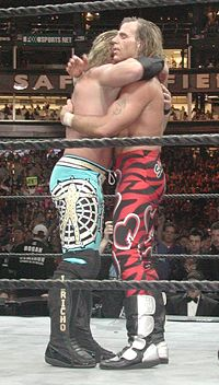 Michaels's match with Chris Jericho at WrestleMania XIX in March 2003 was his first match at a WrestleMania since WrestleMania XIV in March 1998