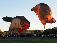 The Skywhale and Skywhalepapa in 2021