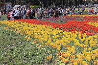 Floriade is held in Commonwealth Park every spring. It is the largest flower festival in the Southern Hemisphere, employing and encouraging environmental practises, including the use of green energy.