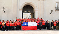 Chile at the 2011 Pan American Games