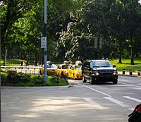 Center Drive in Central Park