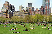 Sheep Meadow, a common place for gatherings