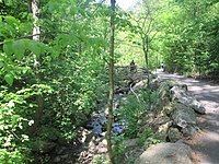 North Woods, one of several places where crimes were reported during the 1989 Central Park jogger case