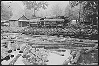 Sawmill and millpond in Erwin, West Virginia, photographed by Marion Post Wolcott in 1938