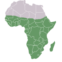 Geographical map of sub-Saharan Africa.