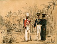 Members of a Nair brigade in the service of the British, as painted by the Swiss artist Paul Aimé Vallouy.