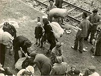 Jews arrive with their belongings at the Auschwitz II extermination camp, summer 1944, thinking they were being resettled.
