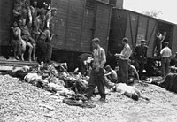Bodies being pulled out of a train carrying Romanian Jews from the Iași pogrom, July 1941