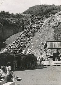 """The """"stairs of death"""" at the Weiner Graben quarry, Mauthausen concentration camp, Austria, 1942"""