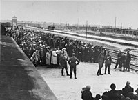 Jews from Carpathian Ruthenia on the selection ramp at Auschwitz II, c. May 1944. Women and children are lined up on one side, men on the other, waiting for the SS to determine who was fit for work. About 20 percent at Auschwitz were selected for work and the rest gassed.