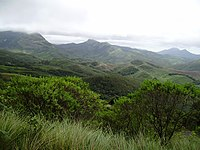South Western Ghats montane rain forests