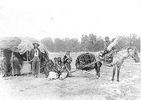 Stump Horn and family (Northern Cheyenne); showing home and horse-drawn travois.