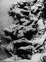 Bodies of the Jasenovac camp prisoners in the Sava River