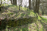 External view of the Burg site