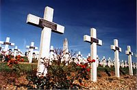 The French military cemetery at the Douaumont ossuary, which contains the remains of more than 130,000 unknown soldiers